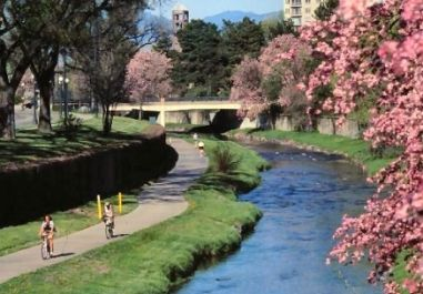 Cherry Creek bike path in Denver. I can ride my bike for hours on this path!