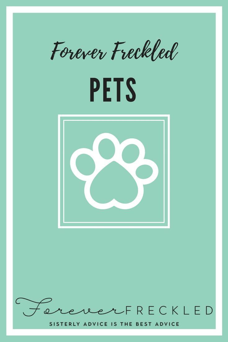 43 best Forever Freckled Veterinary Tips images on Pinterest ...