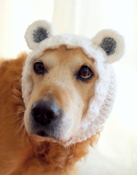 Bear Snood For Dogs Bear Ears For Large Dogs Bear Dog Costume