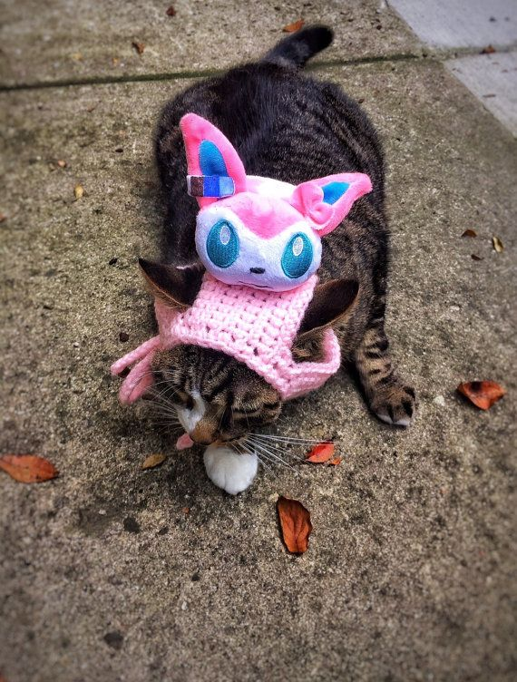 15 Must-see Cat Dog Costume Pins | Halloween costumes for ... - photo#25