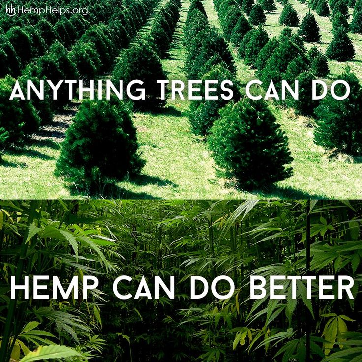 1 acre of #Hemp can produce the same amount of paper as 2-4 acres of #Trees. Each Hemp Shirt Plants 11 Trees: