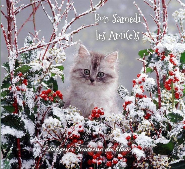 Samedi 30 décembre  635fe9ab3293948781c022d877c003da--rustic-christmas-winter-christmas