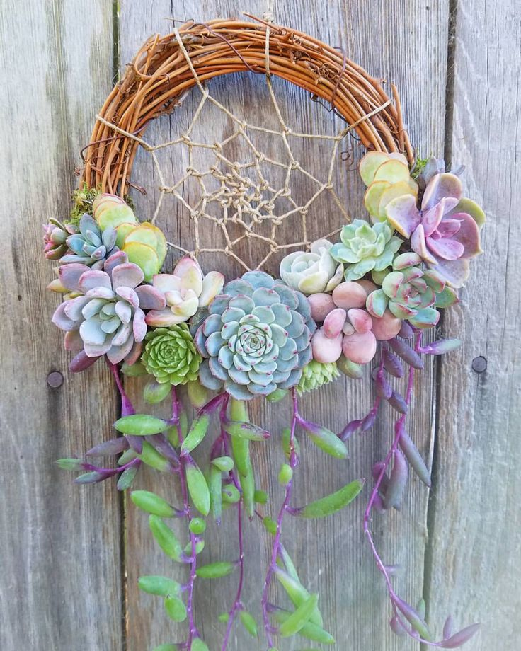 """4,155 Likes, 186 Comments - Jen Tao (@jenssuccs) on Instagram: """"Succulent dream catcher! Clear my schedule, all I wanna do is make a million more of these!…"""""""