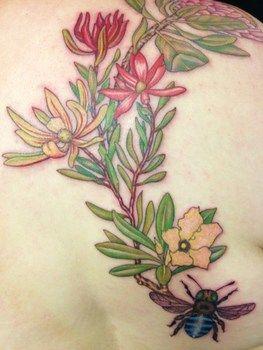 Australian Native plant botanical tattoos - Tattoo Lu