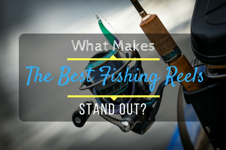 I have a feeling you'll like this one 😍 What Makes The Best Fishing Reels Stand Out? https://bearcaster.com/best-fishing-reels/