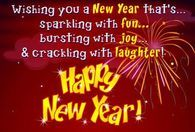 Wishing You A New Year Thats Sparking With Fun...Happy New Year