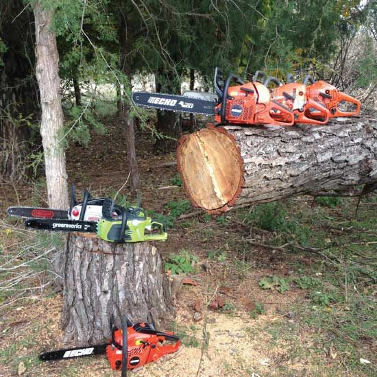"After around 25 occurrences of ""Timber!"" Caleb rehashes a day of chainsaw reviews. - GRIT Magazine"