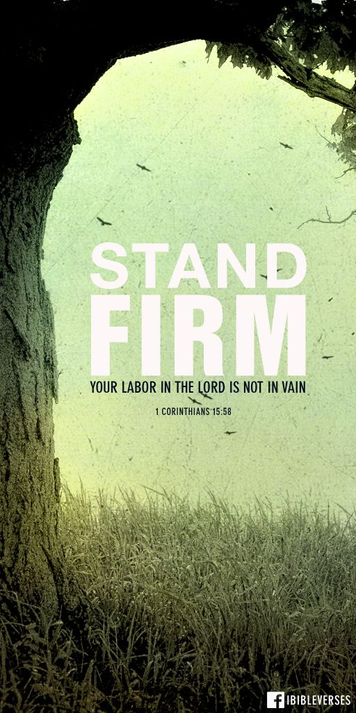 Therefore, my dear brothers and sisters, stand firm. Let nothing move you. Always give yourselves fully to the work of the Lord, because you know that your labor in the Lord is not in vain. -1 Corinthians 15:58