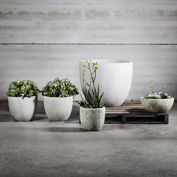 38 best pots planters images on pinterest landscaping plant frankie tub range concrete grey garden pots pot plants flower pots garden workwithnaturefo