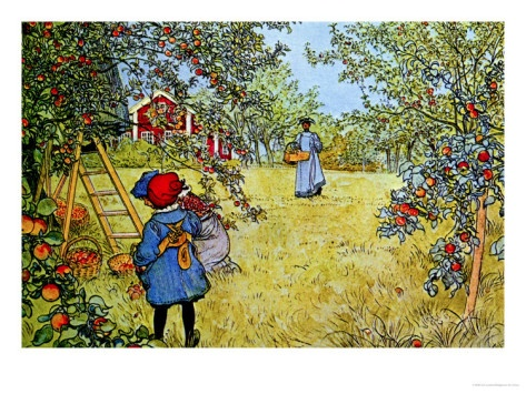 Apple Picking Carl Larsson