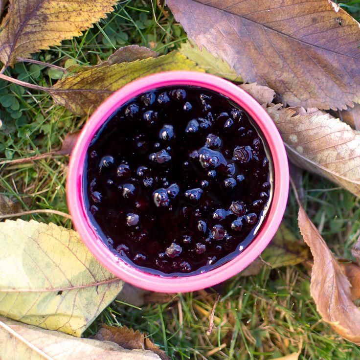 Recept på hemmagjord blåbärssoppa