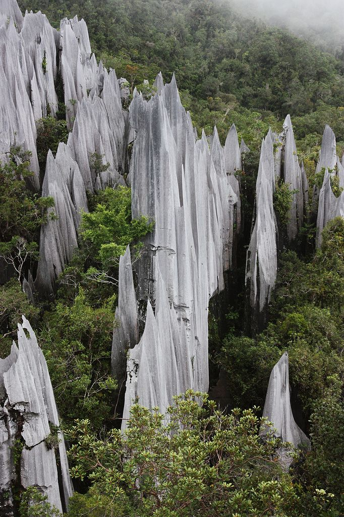 Gunung Api (Pinnacles) - Mount Api is a limestone mountain located in Gunung Mulu National Park in Sarawak, Malaysia. | by ExtremeGreen