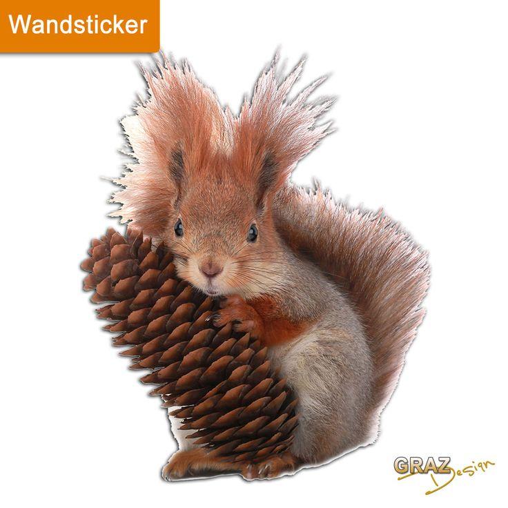 Amazing Wandsticker Wandtattoo Wandaufkleber Kinderzimmer Eichh rnchen Zapfen eBay