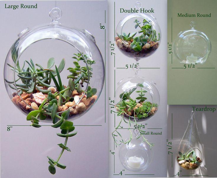 25 best ideas about hanging glass terrarium on pinterest hanging terrarium glass terrarium. Black Bedroom Furniture Sets. Home Design Ideas