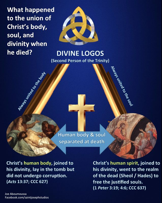 paschal mystery As we journey through the lenten season, leading up to holy week, where as a  people we once again live the paschal mystery christ's.