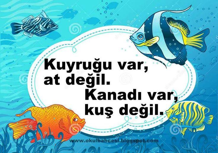 #bilmece #bilmeceler #okulöncesi #ilkokul #anasınıfı #resimlibilmece #balık #çocuk