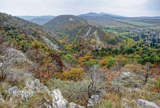 Remete-szurdok, Budai-hegység