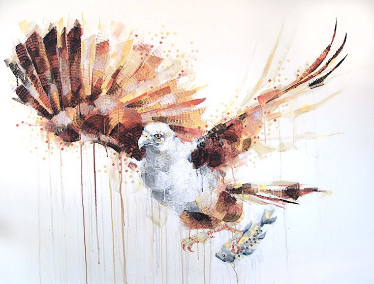 """Brahminy Kite"" painting by Michael Cain- Gnashing Teeth (gnashingteeth)"