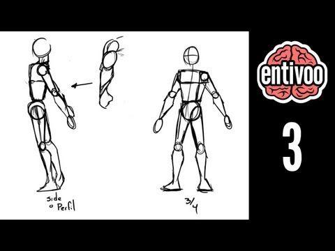 Aprende a dibujar el esqueleto y sus proporciones - Parte 2 - YouTube