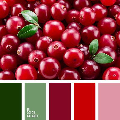 """""""пыльный"""" розовый, алый, бордовый, оттенки зеленого, оттенки красного, подбор цвета, розовый, салатовый, тёмно-зелёный, цвет клюквы, цвет ягод, цветовое решение для дизайна, яркий красный."""