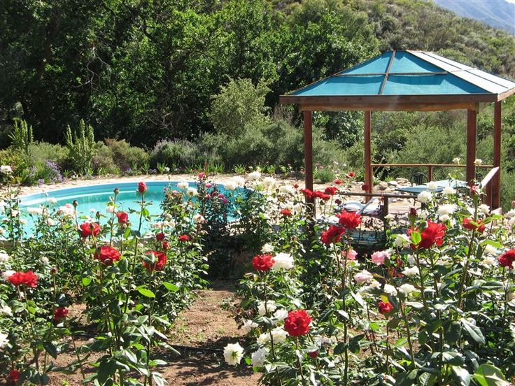 Keisie Cottages - William and Karin welcome you to Keisie Cottages, cosy farm holiday self-catering mountain cottages on a beautiful fruit and wine farm in the Keisie Valley, 20 km outside of Montagu. Our farm is just below ... #weekendgetaways #montagu #southafrica