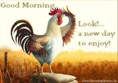 GOOD MORNING MEMES | Cute Good Morning Pictures