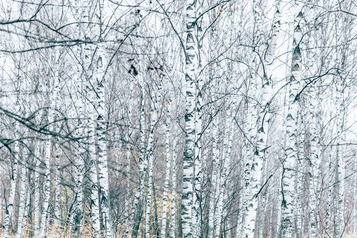 #finnishbeautyis #lumene
