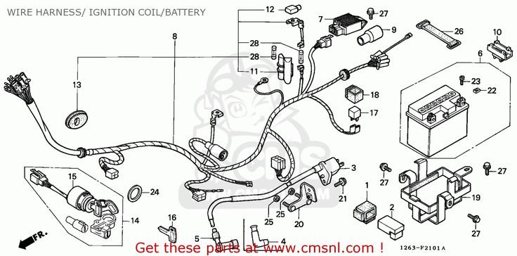 Image result for 1989 yamaha Zuma wiring diagram