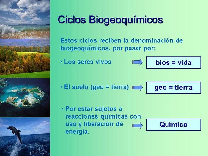 Ciclos Biogeoquímicos Importancia Y Caracterísitcas Ciclo Del Nitrógeno Ciclo Hidrologico Ciclo Del Carbono