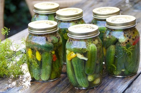 Opskrift på verdens bedste syltede agurker
