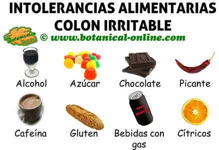 intolerancias alimentarias colon irritable, alimentos prohibidos para dieta intestino irritable