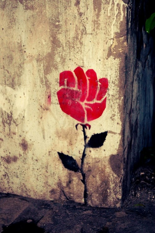 street art - THIS IS INTERESTING OUI!! (the petals form the shape of a fist!!) - ONE HAS TO WONDER WHY?? ✳✳✳