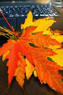 #autumn2013 #autumncolors #autumnleaves #livelonger #statistics #universityofchicago - Autumn Makes Us Live Longer | The Home Of The Twisted Red LadyBug