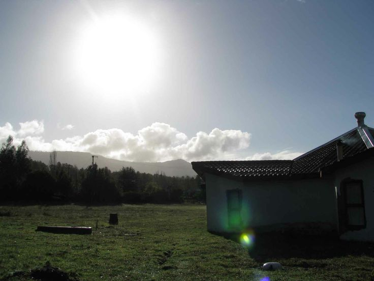 La tarde en Afunalhue, cerca de Licán Ray. // The afternoon sun in Afunalhue, near Licán Ray. (IX Región)