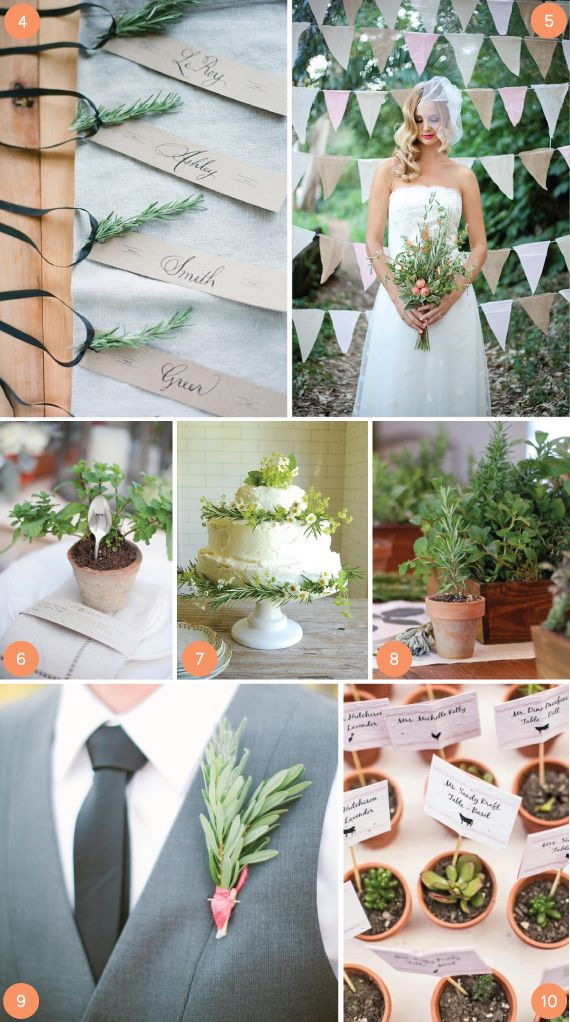 DECORATING WITH HERBS from minted.com/julep