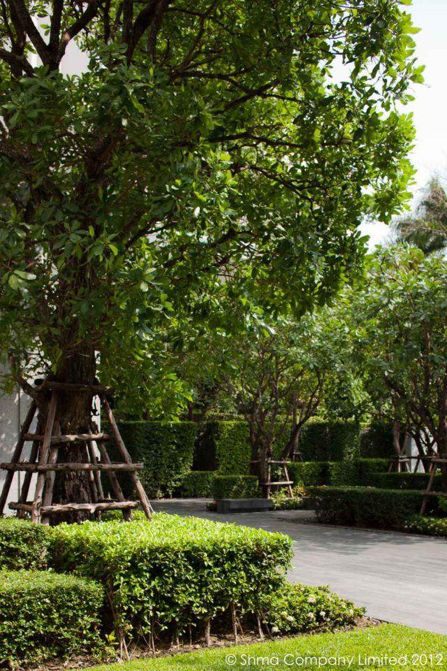 106 best landscape architects shma design images on for Garden design level 3