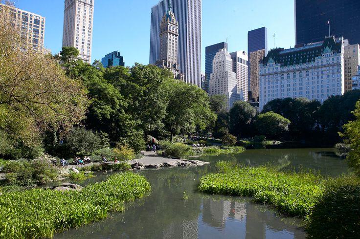 Central Park| newyorkcity.gr