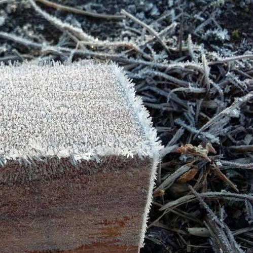 Winter wood ...