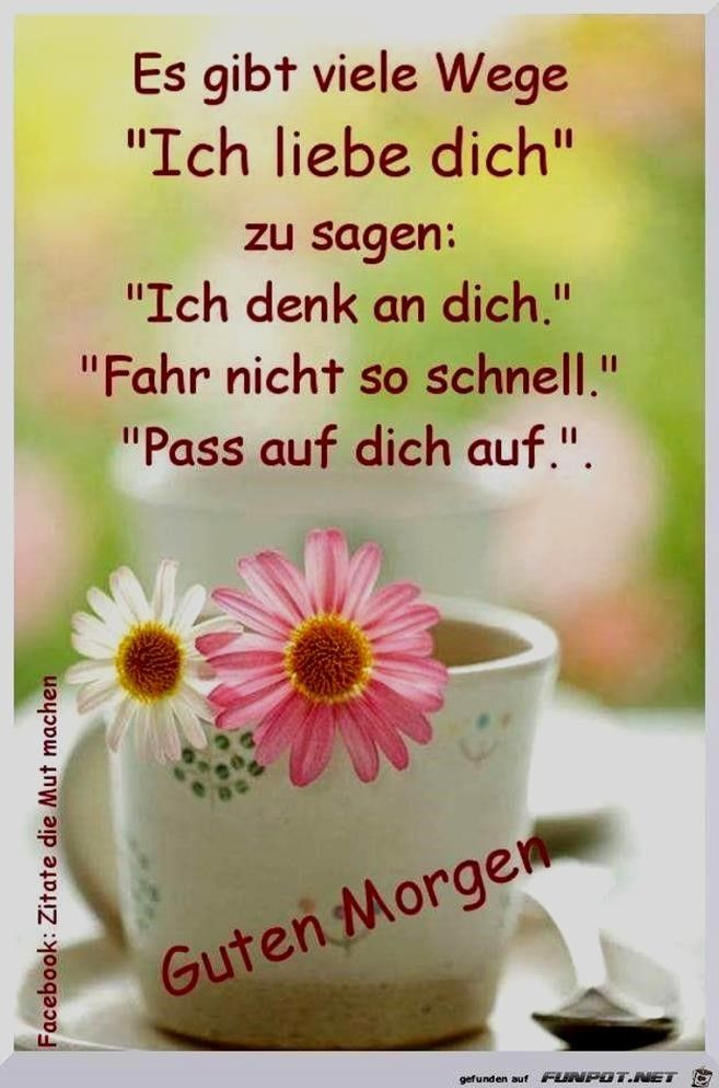 Guten Morgen Ich Liebe Dich Spruch Gutenmorgenbilder Gutenmorgenichliebedichspruch Gutenmorgenichliebedichsp Cute Spanish Quotes Blessed Quotes Quote Cards