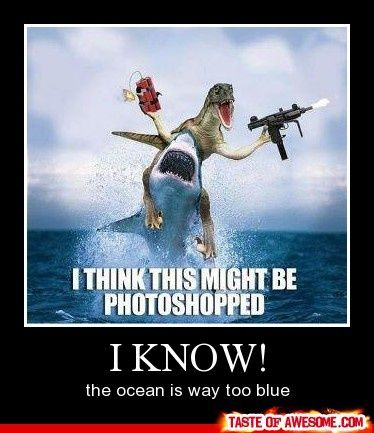 Why does this make me laugh so hard?: Real Life, Funny Pics, Jurassic Park, The Ocean, Hilarious Pictures, Funny Stuff, Funny Photo, Sharks Week, So Funny