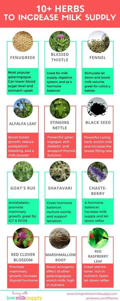 10 Herbs To Increase Your Milk Production  Lactation -1107