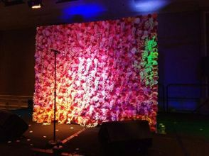 Flower Walls, Arches, and Canopy Rentals for Any Occasion in the Washington DC Metropolitan Area