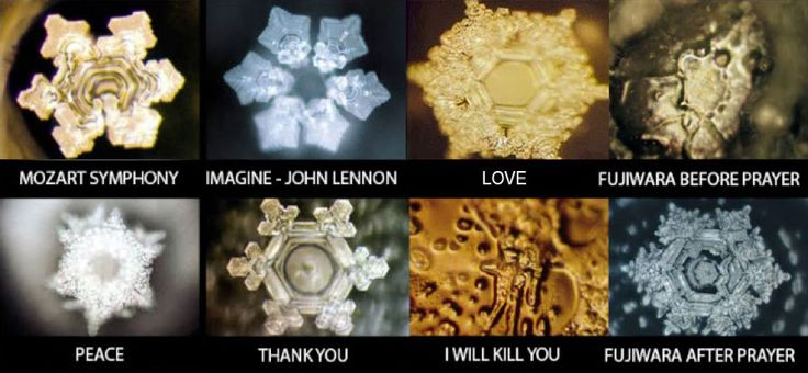 Masaru Emoto the Hidden Messages In Water - Yahoo Image Search Results