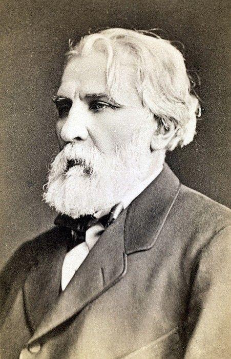 Ivan Sergeevich Turgenev 1818-1883 Canvas Print / Canvas Art by Everett