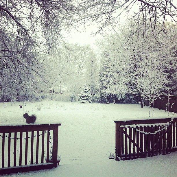 Winter Wonderland - Guelph, Ontario
