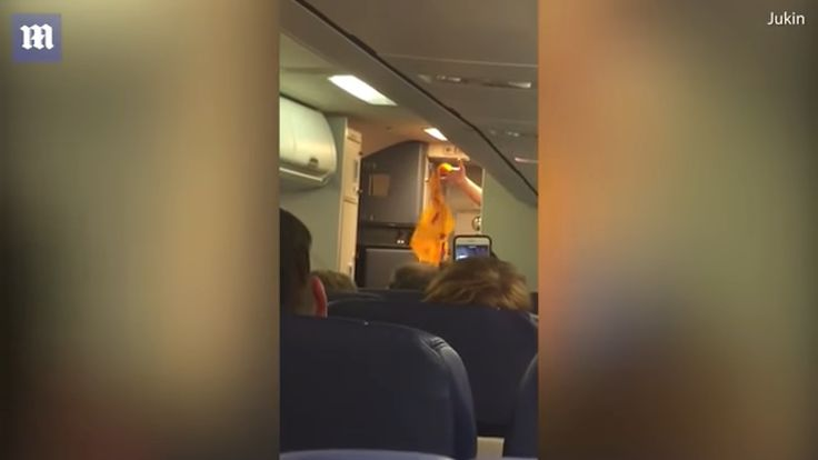 Striptease la bordul unui avion Southwest Airlines (Video)