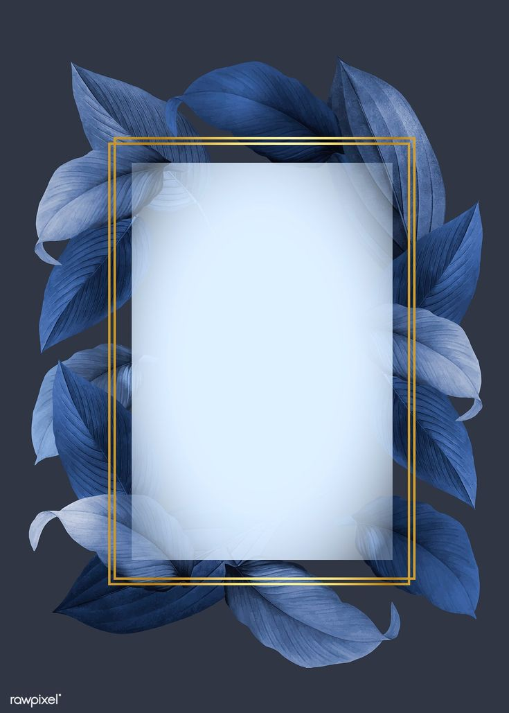 Golden frame on a blue leafy background vector   free image by rawpixel.com / Ka…