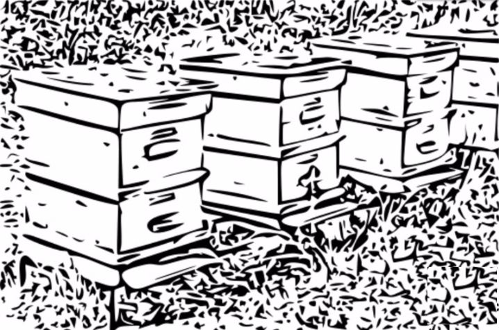 best beehive design #beehive ===SEARCH TERMS: best bee hive kits best bee hive for beginners best bee hives for sale best bee hive feeder best bee hive smoker best bee hive stand best bee hive frames best bee hives to buy best bee hive products in the world best bee hives in kenya best bee hive best bee hive design best bee hive boxes best location for beehive best bee hive australia best position for beehive best color for beehive best wood for beehive best bee hive in the world which bee…