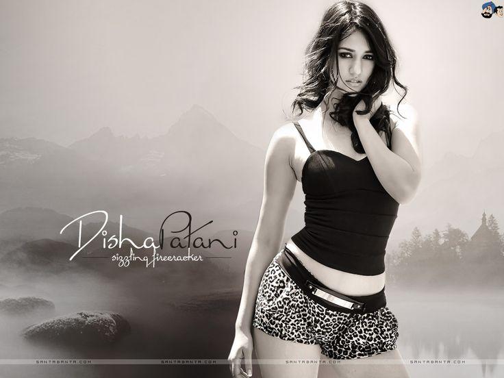 Disha Patani New Sexy Bikini Pictures (6)