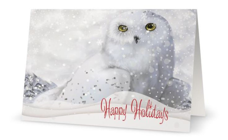 91 best christmas cards images on pinterest christmas greetings your words white snow owl snowy woods personal business custom christmas cards reheart Choice Image